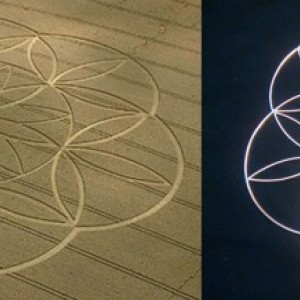 flower of life meets egg of life meets crop circle