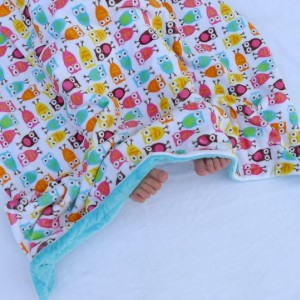 Baby Blanket, Owl Baby Blanket- Pink, Aqua Blue, Orange, Minky Baby Blanket With Aqua Dot Minky for Your Baby Bird