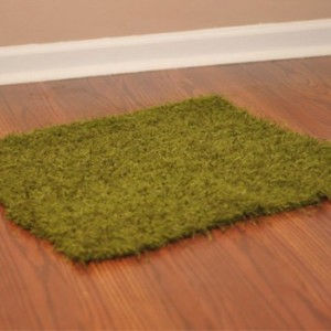 Grass Blanket Photo Prop
