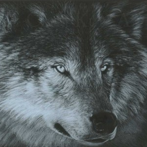 Wolf Art DARK WOLF by Carla Kurt Signed Wolf Print 11 x 14