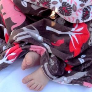 Minky Baby Blanket,  Jungle Zoo Baby Girl Blanket, Elephant Monkey Giraffe Minky Baby Blanket