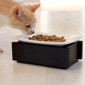 Whisker Stress Free Bowl- 4 Inch Elevated Feeder