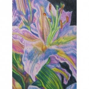 Original Pink Lily flower Prismacolor pencil painting 5x7, OOAK art,  Floral art,  flower painting, flower drawing, floral decor, lily art