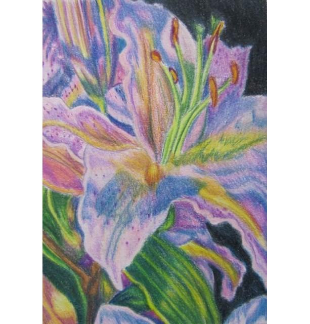 Original Pink Lily flower Prismacolor pencil painting 5x7, OOAK art,  Floral art,  flower painting, flower drawing, floral decor, lily art