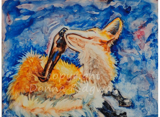 Wildlife art, Fox watercolor  painting, original art home decor