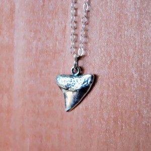 Sterling Silver Shark Tooth Charm Necklace