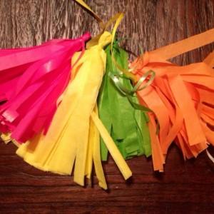 Tissue Tassel party garland