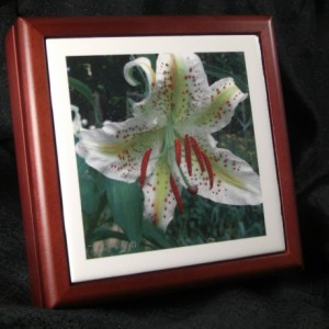 White Lily Rosewood Tile Jewelry Box