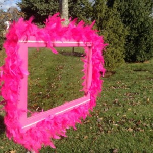 Pink Feather Mirror