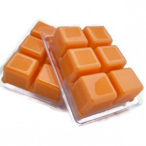 4 count Wax melts tart/tarts the scent of NASCAR, for the gear head in your life. You love the scent of a garage then you'll love this scented melt.