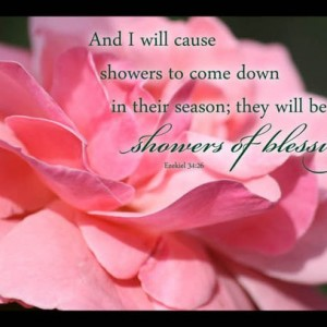Pink Rose Christian Photo with Ezekiel 34 verse 26 Showers of Blessing - Religious home decor, Scripture wall art, Bible verse art