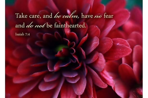 Christian Wall Art - Isaiah 7 verse 4 - Dark red chrysanthemum photo - Fall decor, Scripture art, religious decor, Christian home decor