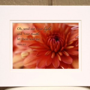 Scripture Art - Psalm 43 verse 3 - Photo of a coral chrysanthemum - Fall decor, Religious Christian photo Scripture wall art, Christian gift