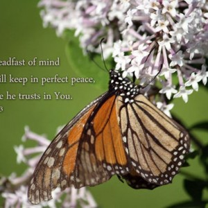 Christian Artwork - Isaiah 26 verse 3 - Monarch Butterfly and Lilac Photo - Religious wall art, Scripture art, Christian gift, Bible art