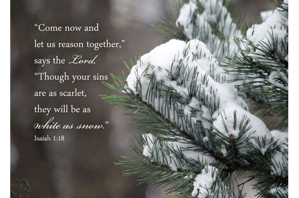 Christian art - Isaiah 1 verse 18  - Snow on Pine Photo - Bible art, religious decor, Scripture wall art, Christian gift, Christian photo