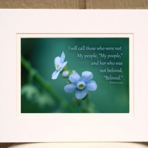 Bible Verse Art  - Romans 9 verse 25 - Forget-Me-Not Flower Photo - Scripture art, religious artwork, Christian gift, inspirational photo