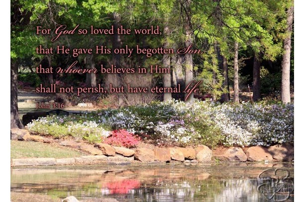 Religious art, John 3.16, Azalea flowers scenery photo, John 3 verse 16, Scripture art, Religious wall decor, Christian decor, Christian art