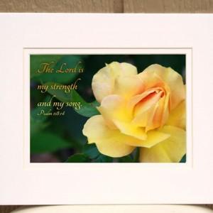 Christian Photo - Psalm 118 verse 14 - Scripture Wall Art - Yellow Rose Photo - Bible Verse Art - Christian Decor - Religious Home Decor