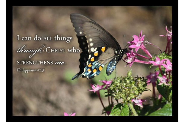Butterfly Photo With Philippians 4 13 Scripture Art Aftcra