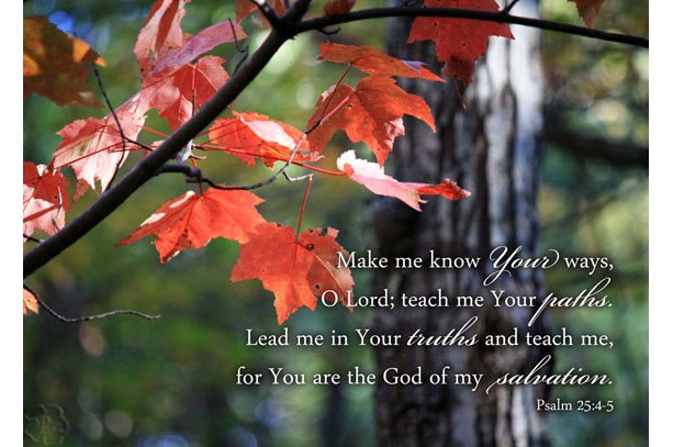 Christian Art Psalm 25 4 5 Red Maple Leaves Photo