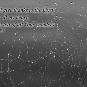 Christian art - Psalm 9 verse 1 - Black & White Photo of a Spider Web - Christian photo, Scripture wall art, religious wall decor, Bible art