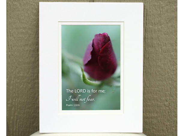 Religious Wall Art - Psalm 118 verse 6 - Red Rosebud Photo - Christian home décor, Scripture art, Christian wall art, Bible verse art