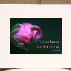 Bible Art - 1 John 4 verse 19 - Pink Rosebud Photo - God First Loved Us - Christian artwork, religious decor, Scripture art, Christian gift