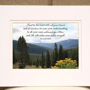 Proverbs 3:5-6 - Bible Verse Art - Trust in the Lord - Mountain View Photo - Scripture wall art, religious decor, Christian wall art