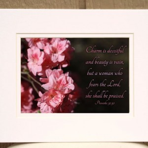 Charm Is Deceitful and Beauty Is Vain Proverbs 31 verse 30 Pink Azalea Picture encouragement for women Scripture gift flower photo Christian