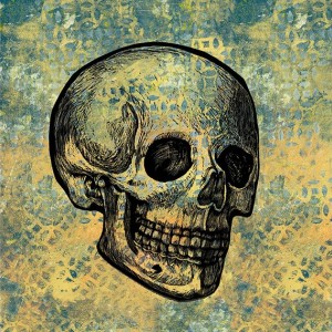 Calavera- Skull on yellow and gray  Mixed Media Illustration Print