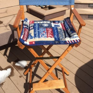 Patriotic Small Cat Dog Mat, Couch Cushion, Directors Chair Pad, Plush Kennel Bed, 4th of July Gifts, Red White and Blue