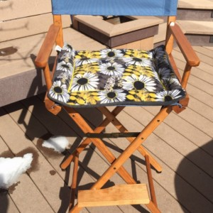 Daisy Flower, Small Cat Mat, Dog Bed, Couch Cushion, Directors Chair Pad, Plush Kennel Bed, Daisy Flowers, Small Crate Pad