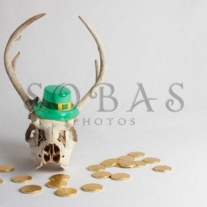 "St Patrick's Day Deer Skull 5"" x 7"" Card Set of 2"