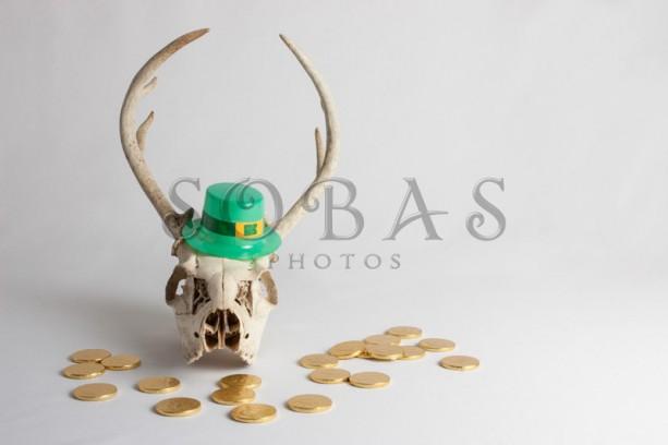 "St Patrick's Day Deer Skull 5"" x 7"" Card Set of 2"