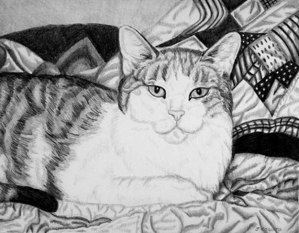 Custom Pet Portrait graphite pencil. 5x7. Any animal! Dog portrait, cat portrait, horse portrait. pencil portrait, ooak gift, pet drawing