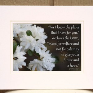 For I Know the Plans I Have For You Jeremiah 29:11 White Azalea Picture Christian wall art white flower photo religious decor inspirational