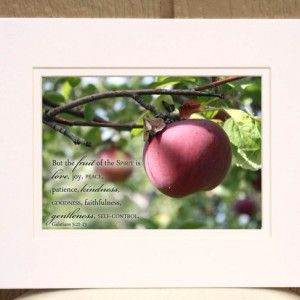 Fruit of the Spirit Bible Verse Art with Apple Photo Galatians 5 verse 22 Christian Kitchen Decor, Scripture Wall Art, Religious Home Decor