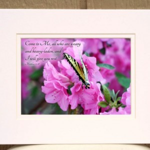 "Bible Verse Art Swallowtail Butterfly on Pink Azalea Flowers with Matthew 11 verse 28 ""Come to Me all who are weary"" Christian Home Decor"