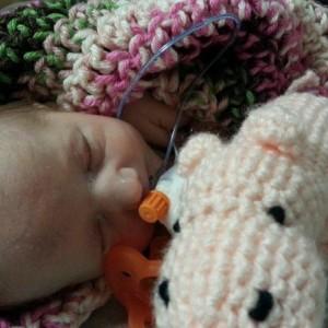 Sweet Baby Hippos - Crochet by Team Russcher