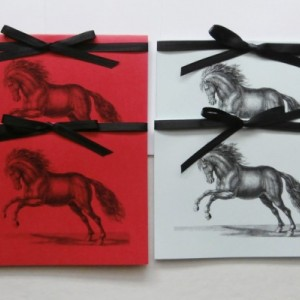 Horse Note Cards | Blank Note Cards | Horse Cards | Note Card Set | Horse Stationery | All Occasion Cards | Animal Cards