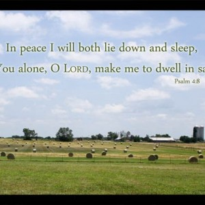 Bible Verse Art Hayfield Photo with Psalm 4 verse 8 Sleep in Peace Christian Bedroom Decor, Scripture Wall Art, Religious Home Decor