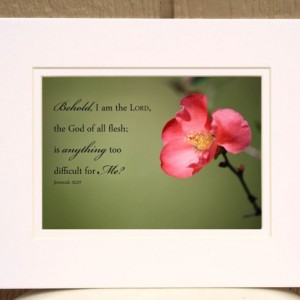 "Inspirational art - Pink Quince Flower with Jeremiah 32 27 ""Is anything too difficult for Me?""  Christian Home Wall Decor, Bible Verse Art"