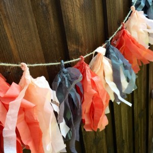 Tissue Tassel party garland