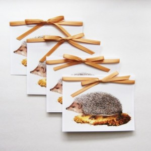 Hedgehog Cards | Blank Card Set | Hedgehog Stationery | Greeting Card Set | Hedgehog Note Cards | Cards with Animals | Animal Cards