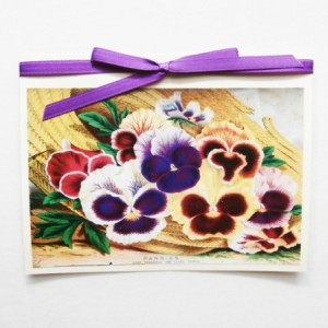 Flower Cards   Pansy Note Cards   Flower Stationery   Note Card Set   Greeting Card Set   Pansy Cards   Stationery Set   Flower Greeting