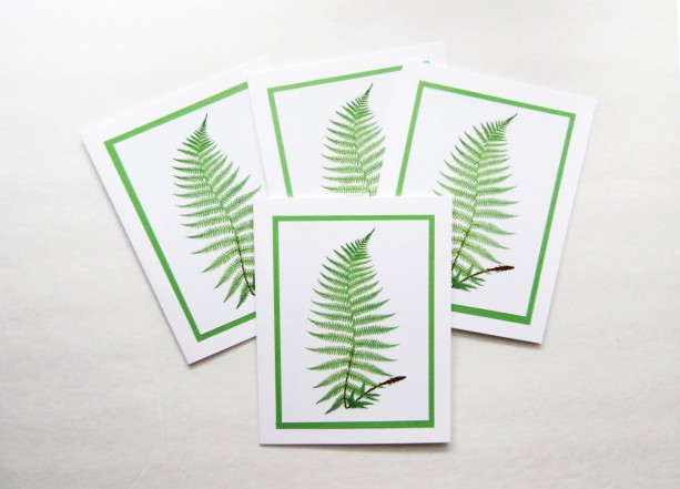 Fern Cards | Greeting Card Set | Fern Note Cards | Fern Stationery | Note Card Set | Blank Greeting Cards | Woodland Cards