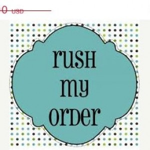 Rush Shipping ~ Fast Shipping~ ~Expedited Shipping