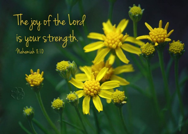 Nehemiah 8 verse 10 - Religious Art - The Joy of the Lord Is Your Strength - Yellow Flowers Photo - Scripture art, Christian wall art
