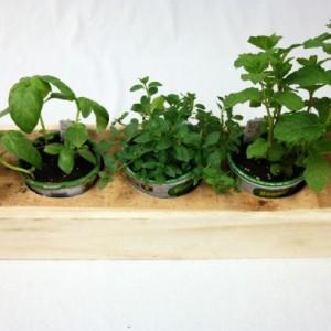 3 Plant Holder Garden Box