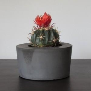 Black Concrete Succulent Planter